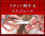スタッフ紹介& スケジュール